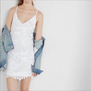 Express lace dress size small.